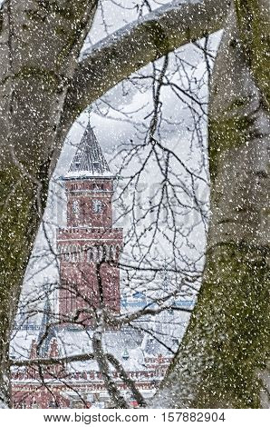 A view of the impressive town hall in Helsingborg through some trees during a snowstorm.