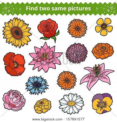 Find two the same pictures, education game for children. Color set of flowers