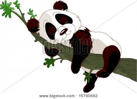 Cute panda sleeping on a branch