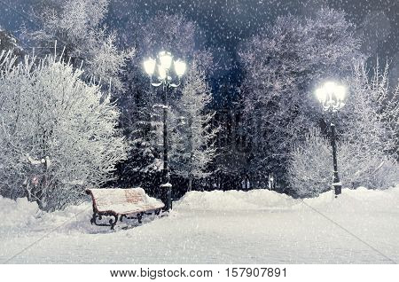 Winter night landscape- bench covered with snow among frosty winter trees and lights. Winter night landscape of park under winter snowflakes.