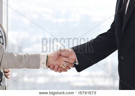 business man and woman handshake on successful  meeting at bright office conference room indoor