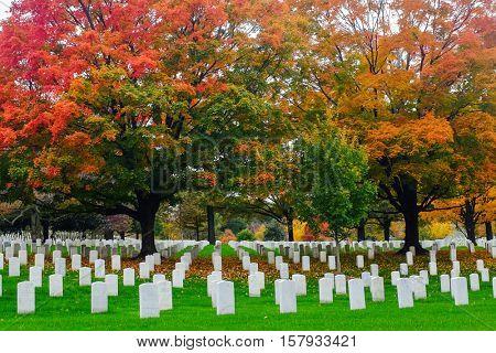 Headstone in Arlington National Cemetery in Autumn - Near to Washington D.C.