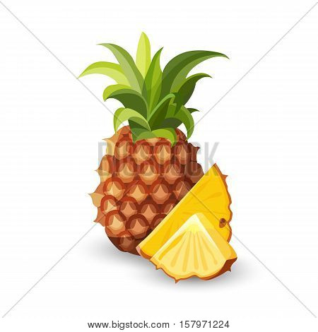 Pineapple isolated on white. Tropical healthy tasty fruit, sweet ananas. Ananas pineapple slices. Healthy food concept. Organic fresh gourmet pineapple. Botanical illustration. Flat style. Vector