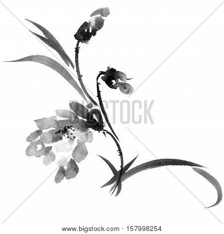 Plant with flower and leaves. Ink painting in style gohua sumi-e u-sin. Oriental traditional painting.
