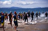 stock photo of triathlon  - Competitors in Triathlon entering the water for the swimming leg - JPG