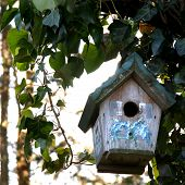 stock photo of shabby chic  - shabby chic inspired bird house ready for occupancy - JPG
