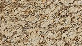 foto of feldspar  - 1x4ft Sample of Brazilian Giallo Santa Cecilia Granite - JPG
