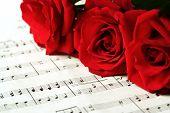 Постер, плакат: Красные розы о нотах