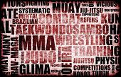 stock photo of jiujitsu  - Mixed Martial Arts MMA as a Fighting Style - JPG