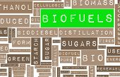 stock photo of ethanol  - Biofuels or Biofuel Clean Energy as a New Concept - JPG