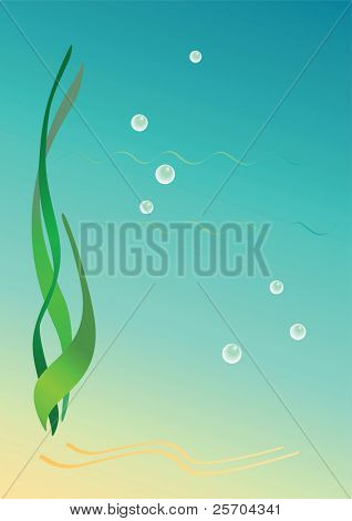 Background with seaweeds. Vector illustration