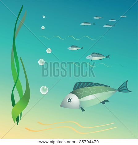 The undersea world. Fishes, seaweeds, bubbles. Vector.