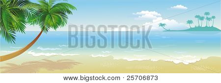Panoramic tropical beach with palm