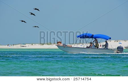 Family on Leisure Boat with Pelicans Overhead