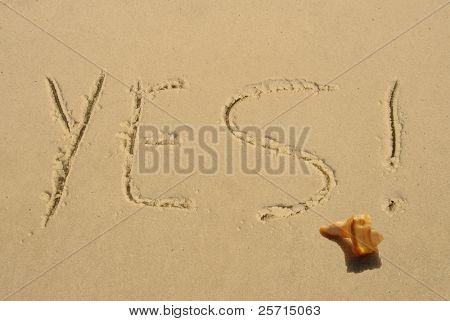 YES! Written in Beach Sand by Seashell