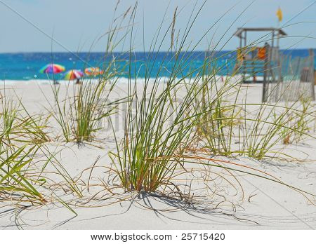 Sea Grass with Colorful Umbrellas and Lifeguard Stand in Distance