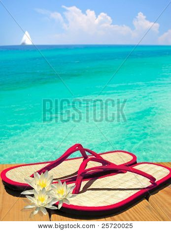 Red flip flop sandals on dock by lily flowers overlooking gorgeous ocean with sailboat in distance