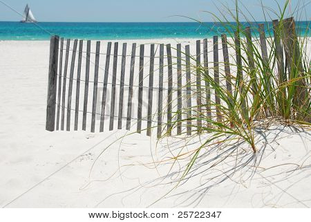Beautiful sand dune on pensacola beach, florida