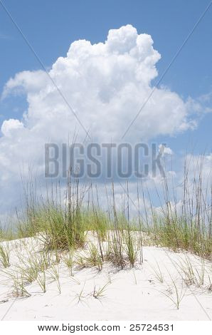 pretty beach sand dune under thunderhead cloud