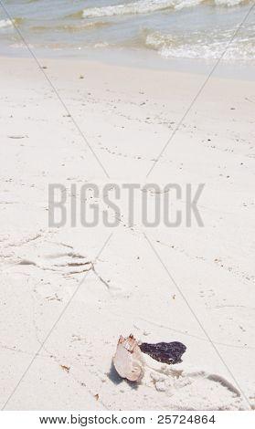 ORANGE BEACH, AL - JUNE 10: A thick oil glob lays beside a seashell on the beach at Perdido Pass, AL on June 10, 2010 as the BP oil slick moves ashore.