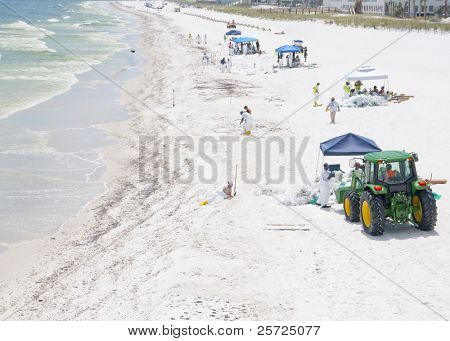 PENSACOLA BEACH - JUNE 23:  BP oil workers attempt to clean oil covered sand on June 23,  2010 in Pensacola Beach, FL.