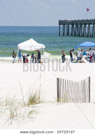 PENSACOLA BEACH - JUNE 23:  BP oil workers attempt to clean oil covered sand on June 23, 2010 inPensacola Beach, FL. The double red