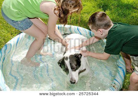 Young kids washing dog in kiddie pool