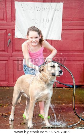Cute girl washing dog to earn money