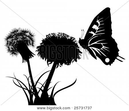Illustration with silhouettes of butterfly and two dandelions