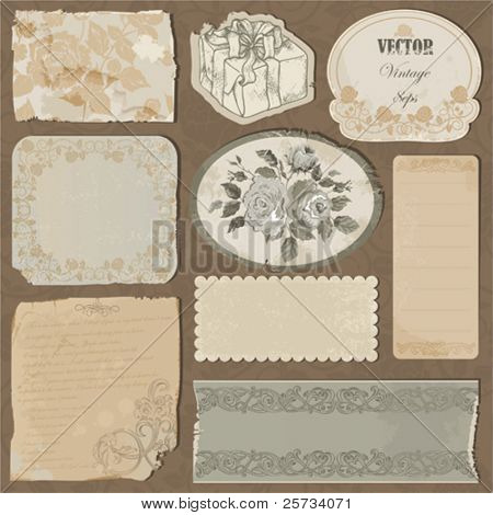 Set of the old torn paper, labels and pieces of wallpaper with decorative elements and roses