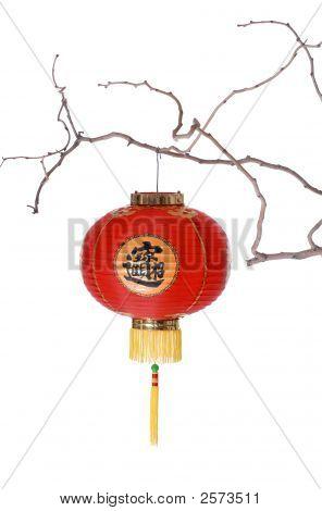 Chinese Lantern