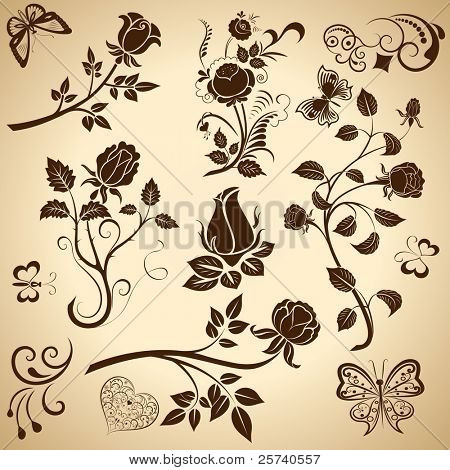 Rose vintage vector design elements.