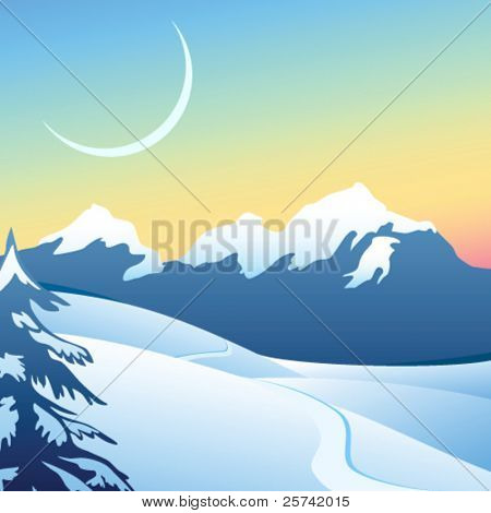 alpine Winterlandschaft