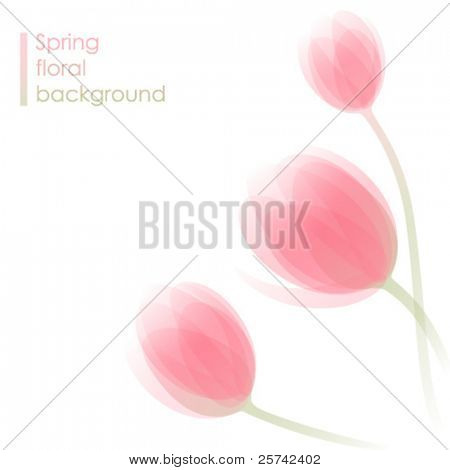 Abstract spring background with delicate tulip flowers