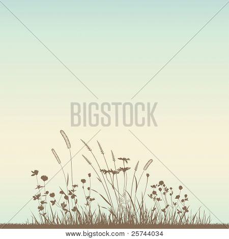 Growing grass silhouettes, vector. No autotracing.