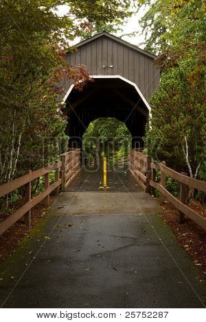 Drain Covered Bridge