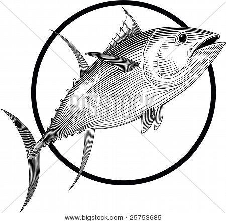 Tuna.eps