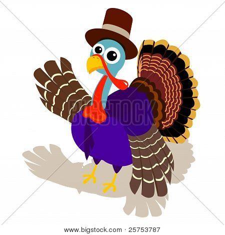 Turkey in Pilgrim Hat