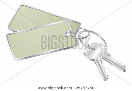 Two Keys With Blank Tag For Text