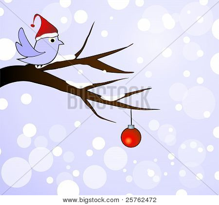 winter bird on branch