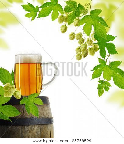 Beer and hop plant in retro style