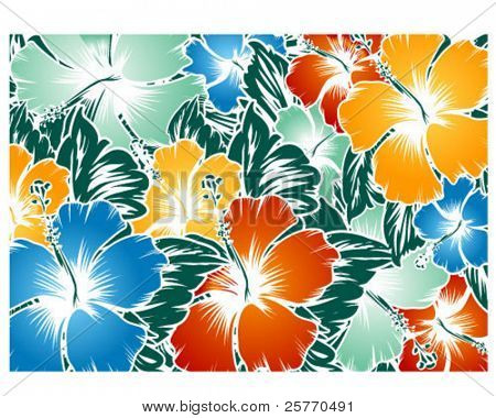 Hibiscus Graphic