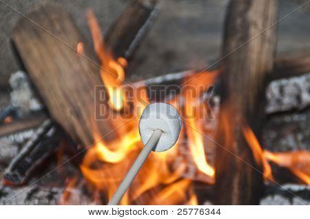 Roasting marshmellow