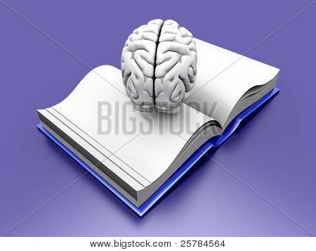 Gehirn Buch.