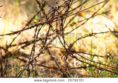 Barbed Wires On Apocalyptic Background