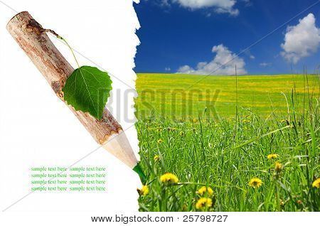 Wooden pencil with leaf painted grass