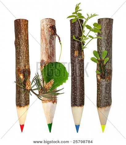 Eco consept with wooden pencils with leaves of different trees