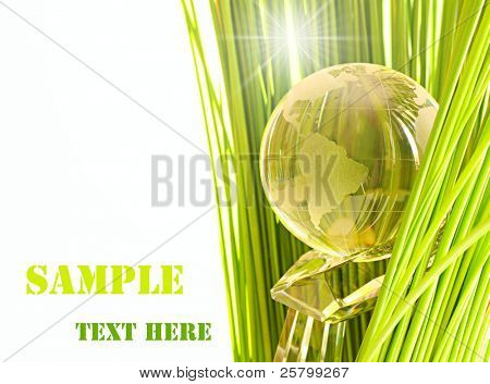 Globe on cristal hand in green grass.