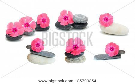 Pink flowers and stones, isolated on white.