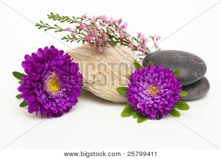 Flowers and stones, isolated on white.